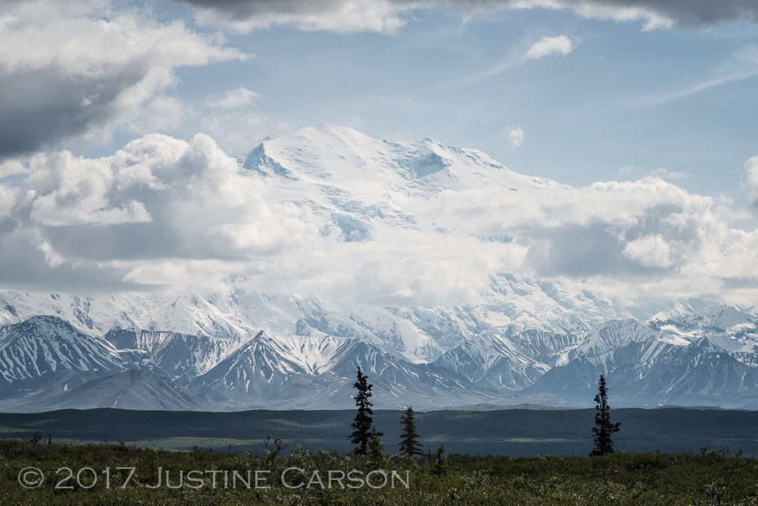 The summit of Denali emerges